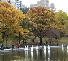 Central Park Lake and Remote Controlled Boats, Autumn Colors, New York City  by lenspiro