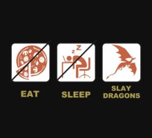 Eat Sleep Slay Dragon by JerseyLuke