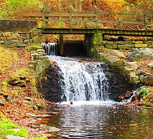 Newlin Grist Mill Waterfall by Christina Zettner