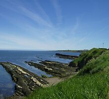St Andrews Coastline on Beautiful Day by adrianwale
