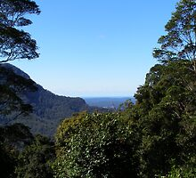 Looking back to the coast on the way to Dorrigo. Nrth. N.S.W. by Rita Blom