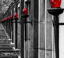 Remembrance day by philmfoto