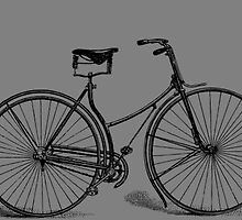 Vintage Bicycle by Vana Shipton