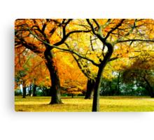 Autumn © Canvas Print