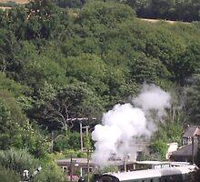 Puffa Train by TheShutterbugsG
