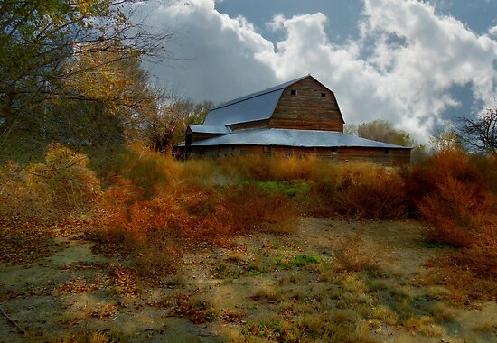 Abandoned Barn.... Caldwell, Idaho by trueblvr