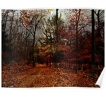 Seasonal Autumn Road Poster