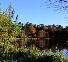 Idyllic Autumn Estate by Wrayzo