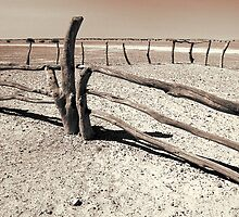 Deserted stockyard (duotone) by graphicscapes