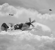 Spitfire XIV,  V-1 Hunter by J Biggadike