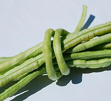 Bundle of Yardlong Beans by jojobob