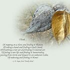 Sympathy Greeting Card - Poem and Milkweed Pods by MotherNature