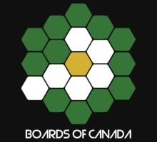 BOARDS OF CANADA 2 by Ritchie 1