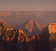 North Rim, Grand Canyon by Jenna Dosch