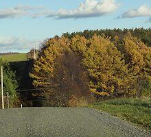 Last Blast of Autumn by vigor