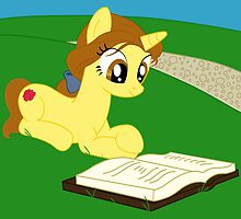 Pony Belle by Ashley Krauss