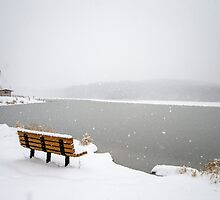 Looking Over the Frozen Lake by Crystal Wightman