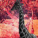 Giraffes In Red by korokstudios