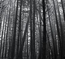 Ghost of Utopia by RobertCharles