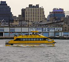 Water Taxi, New York, USA by Margaret  Hyde