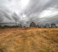 Wide Angle Farmyard  by Steve St.Amand