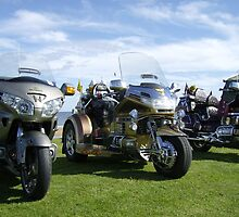 Honda Goldwings by adrianwale