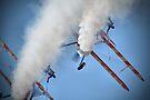 Smoking Pass - Wingwalking - Shoreham 2013 by Colin J Williams Photography