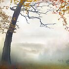 Morning Fog 2 by Igor Zenin