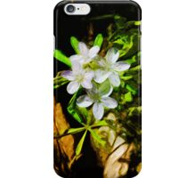 Spring Beauty a Wildflower 1 Abstract Impressionism iPhone Case/Skin