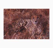 Cheetah Stare Kids Clothes