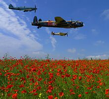BBMF over the Poppy Field by AviationPrints