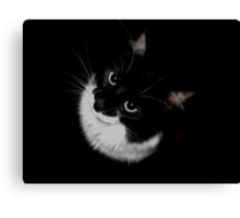 Tux Kitty Canvas Print