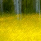 Abstract Motion Blur Trees Field by Jamie Roach