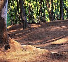 Kaloli Point 2 by Ellen Cotton