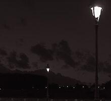 Parisian street lights at night by Olivier Sohn