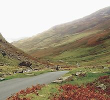Honister Pass by GeorgeOne