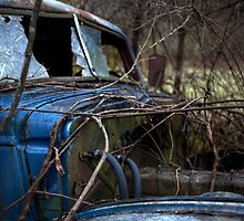 The Blue Truck: Windshield by DJ Fortune