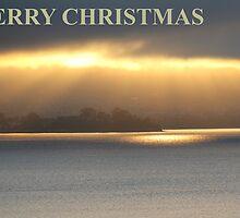 Derwent River Tasmania by Stefan Nicholson