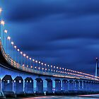 Second Severn Crossing at Night by © Steve H Clark