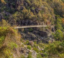 Autumn, Cataract Gorge, Tasmania, Australia #2 by Elaine Teague