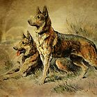 Vintage German Shepards by PineSinger