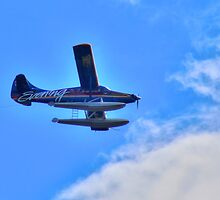 King5 Float Plane by Sue Morgan