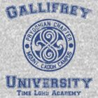 Gallifrey University (Worn Out) by ajf89