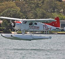 Beaver Floatplane @ Catalina Festival, Rathmines, Australia 2013 by muz2142