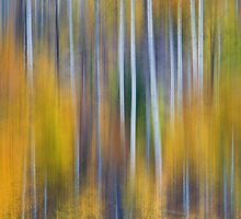 Surreal Colorful Aspen Tree Magic Abstract by Bo Insogna