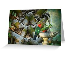 Christmas Birds Greeting Card