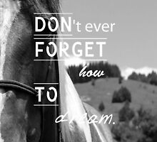 Don'tEverForgetHowToDream - Horse iPad Case by haewee