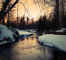 Winter on Campbell Creek by greydaisy