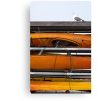 Seagull and Kayaks at AT&T Park San Francisco Canvas Print