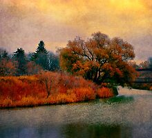 Autumn Colours by Dorothy  Pinder